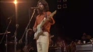 George Harrison and Friends - Something - Live